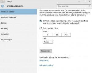 windows 10 update options