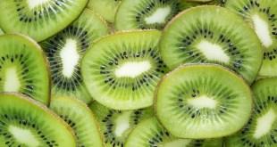 Bienfaits kiwi