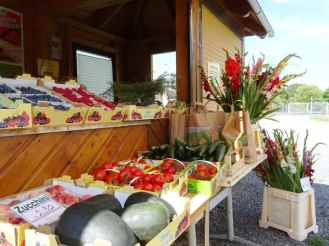 Frisches Obst, Gemüse und Blumen