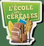 L'école des céréales - Site baseline