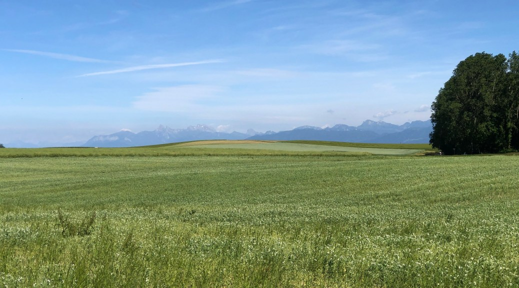 A view of fields, and the Alps