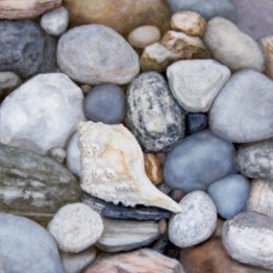 Rocky Shore 3 by Alex Dunwoodie