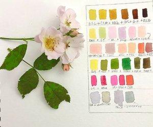 christine-herron-2021-botanical-notebook-course