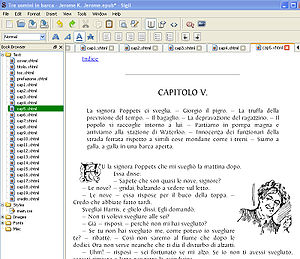 Screenshot showing a sample eBook and director...