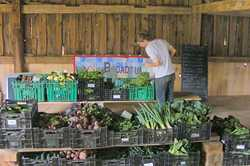 Broadturn Farm