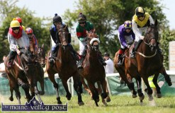 Castleisland Races at Powell's Road 15-6-2014