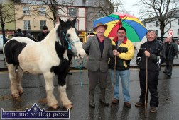 John Bosco McMahon, Ballybunion (left) pictured with Bernie O'Connell, Lixnaw and Jay Trant, Tralee at Castleisland's annual November 1st Horse Fair on Saturday. ©Photograph: John Reidy
