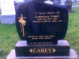 The Carey Family head-stone in Mountcollins.