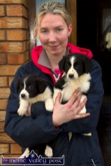 Katie's sister, Lacey with two of the first litter of puppies. ©Photograph: John Reidy