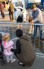 A little girl getting a close of a pair of ponies at the annual November Horse Fair in Castleisland on Monday afternoon. ©Photograph: John Reidy