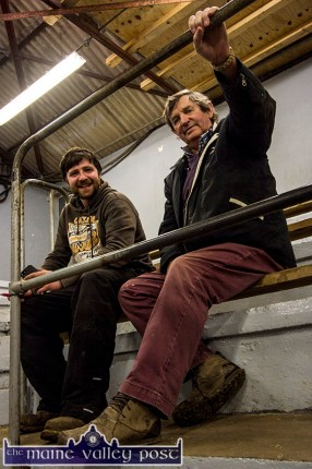 Macroom men, Fintan Collins (left) and Billy O'Leary pictured at the Kerry Holstein Friesian Breeders Club annual Pedigree Registered Calved and In-Calf Heifers Show and Sale at Castleisland Co-Op Mart on Friday. ©Photograph: John Reidy