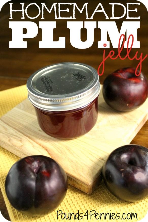 How to make homemade plum jelly recipe
