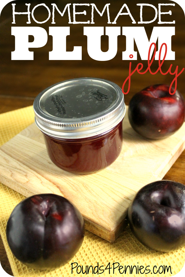 How to make homemade plum jelly recipe