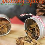 homemade mulling spice recipe