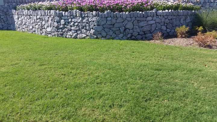 Lawn installation services