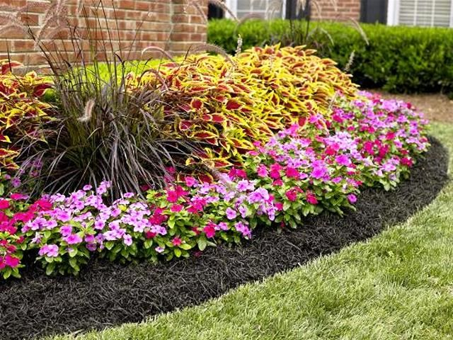 Mulch Installation, Mulch Delivery, Frisco TX