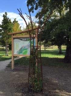 Porte du Delta Vert à Mussonville
