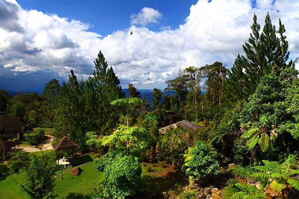 Borneo Highland Resort