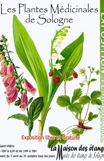 Affiche.2009.Plantes.medicinales