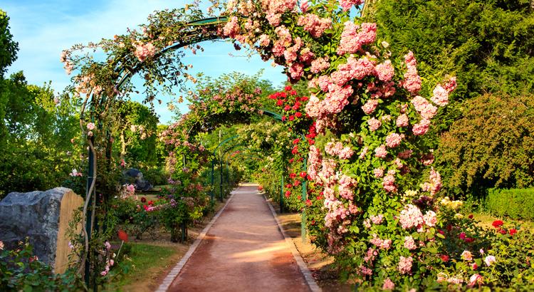 comment installer une arche de jardin