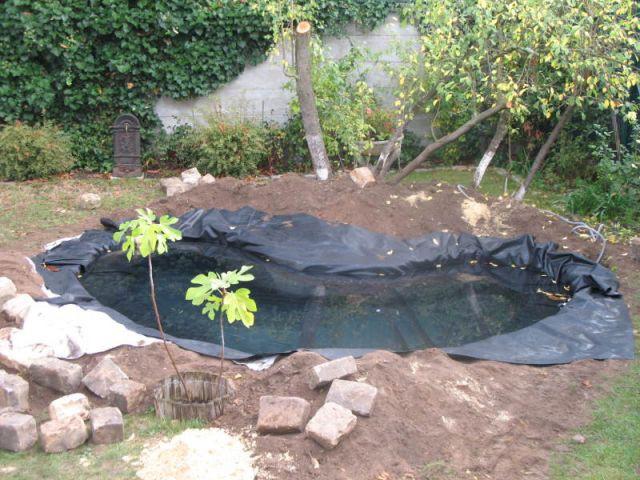 1 bassin pour redonner vie a 1 jardin