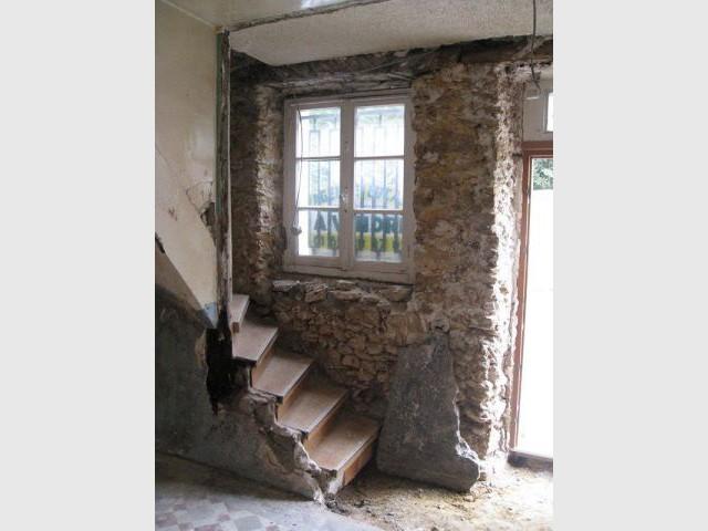 Humidit Dans Maison Adieu Les Champignons Et Moisissures
