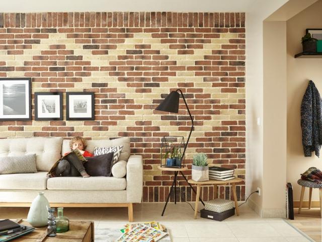 plaquettes de parement et briques