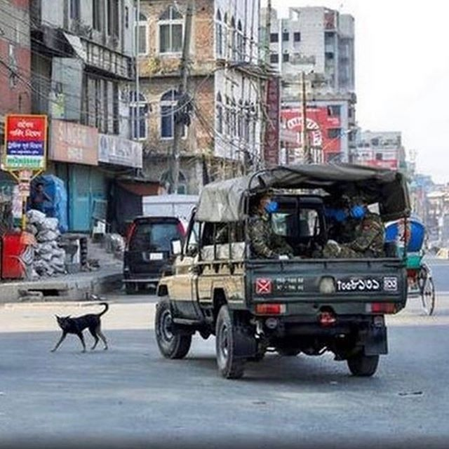 Lockdown in Bangladesh. You do not venture out. Photo thanks to the ever inspiring @motif.jackie