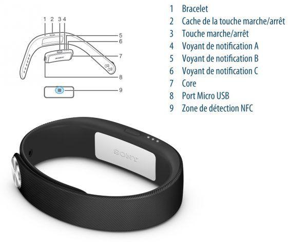 Les parties du bracelet connecté