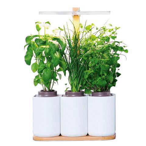 Pour les jardiniers high tech