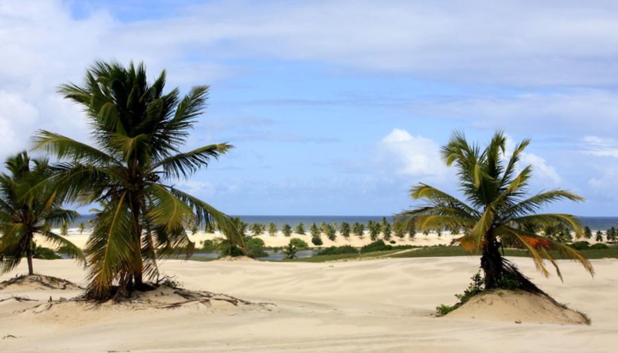 Mangue-Seco-praia-Bahia Razões para conhecer Mangue Seco
