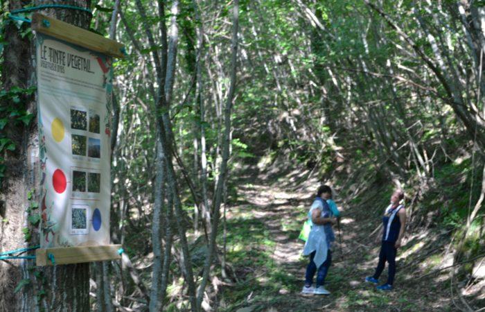 ValdericArte-sentiero colori percorso tematico nel bosco con tappe e cartelli che spiegano per punti l' estrazione e l' utilizzo dei colori naturali