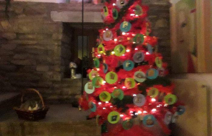 il nostro albero alternativo