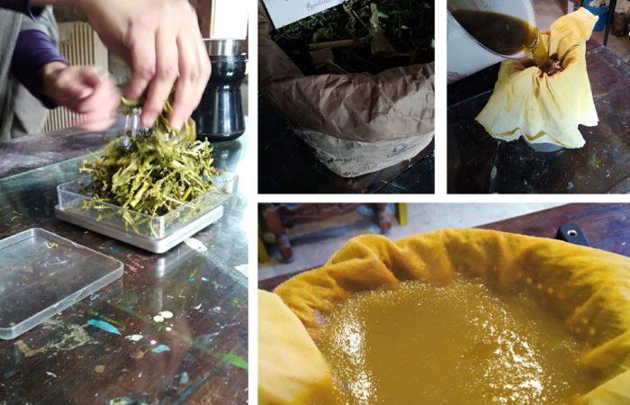 prepariamo_giallo Reseda