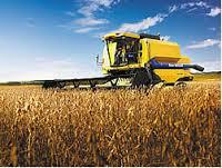 atividade agrícola