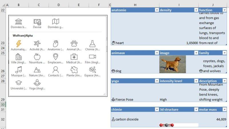 EXCEL : Comment exploiter les types de données sur Excel ; les différents types (Insider)