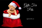 Gifts For Pets ~ Holiday Gift Guide 2018