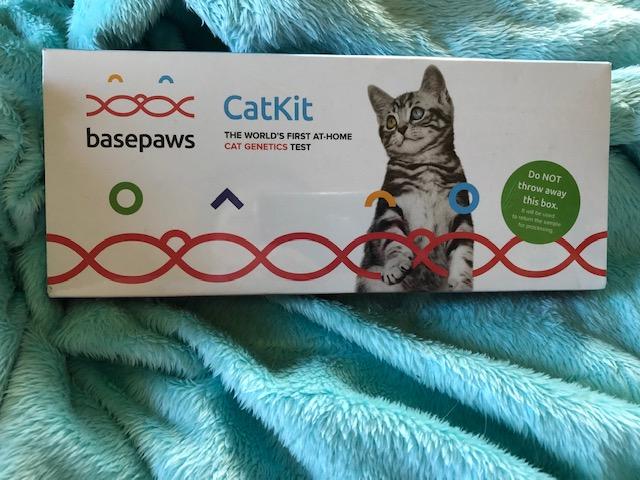 Basepaws Cat DNA Kit