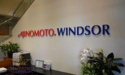 Ajinimoto.Windsor