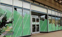 FDC Dance Company Window Perf