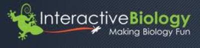 Interactivebiology