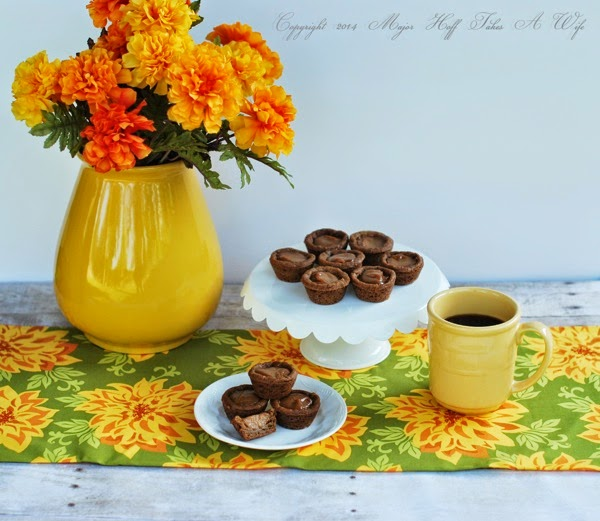 Fall desserts Pumpkin custard with a ginger cookie crust