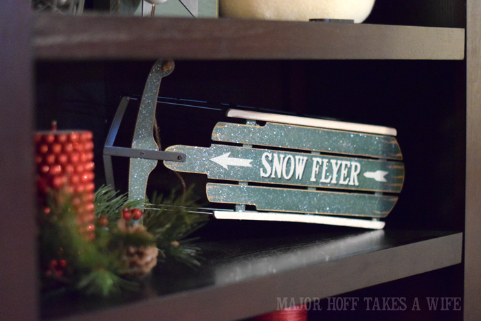 Snow Flyer on bookshelf
