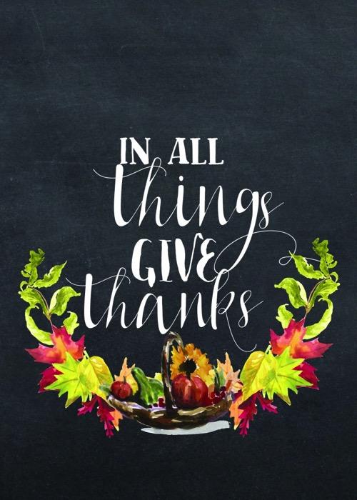 Thanksgiving 101 731x1024