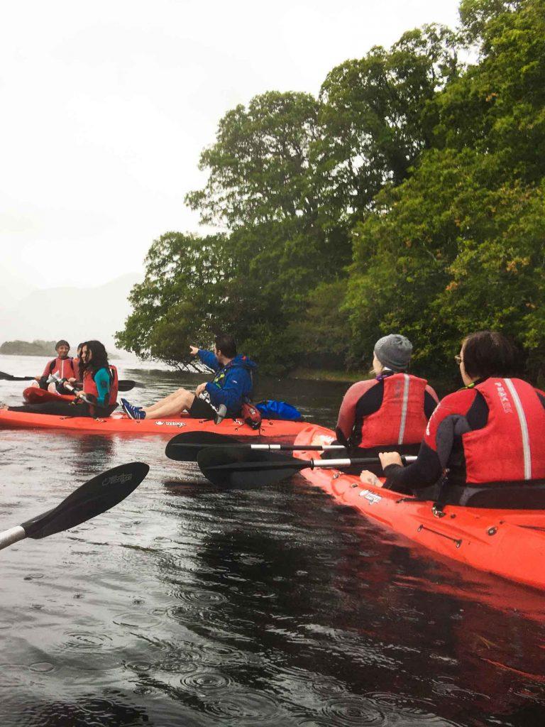 Wild n' happy kayak tours on Lake Leane