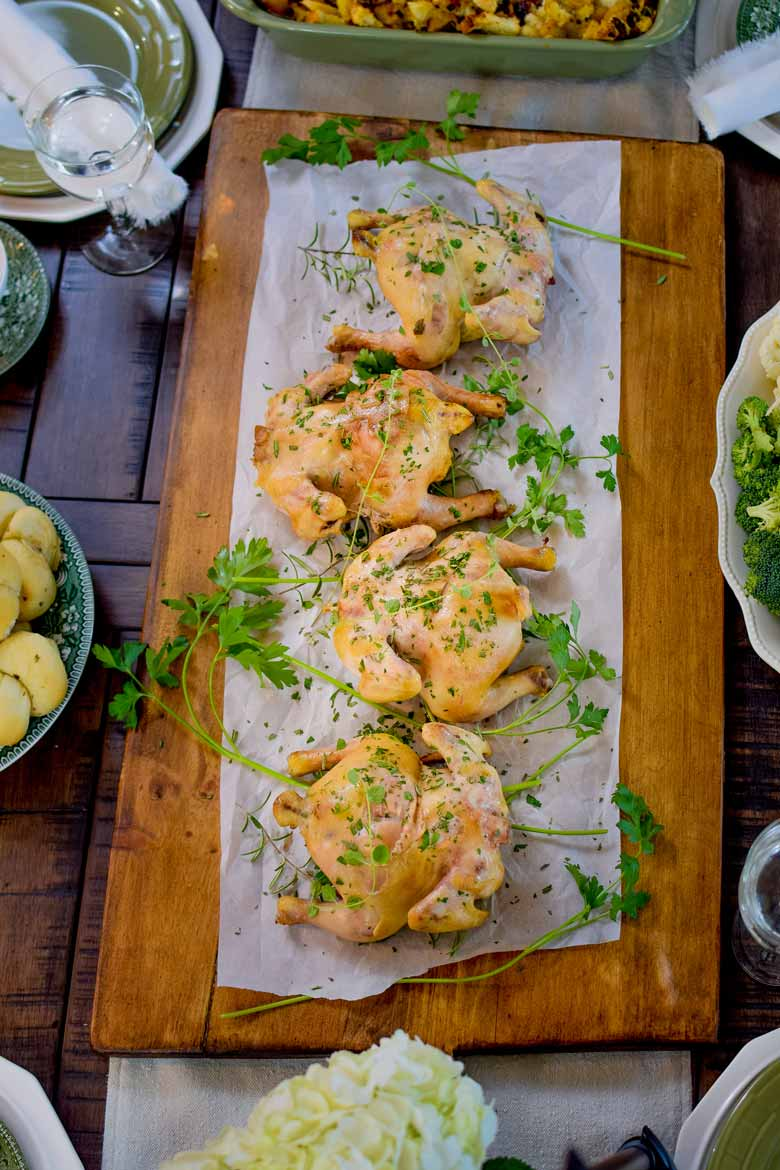 How to cook cornish hens in your oven for an easy Thanksgiving or Holiday meal. Learn what tempertature to cook at, how to thaw, and how to cook stuffed!