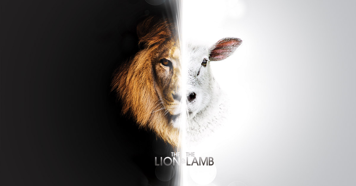 Image result for lion and the lamb