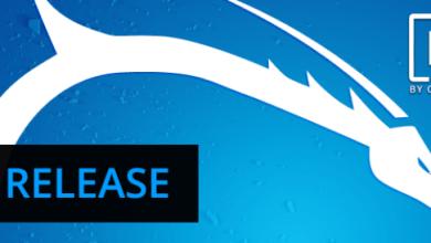 Обновление Kali Linux 2019.1 5