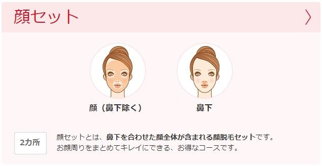 顔脱毛セットの施術部位