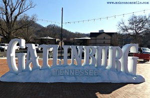 Family Friendly Guide to Gatlinburg, TN